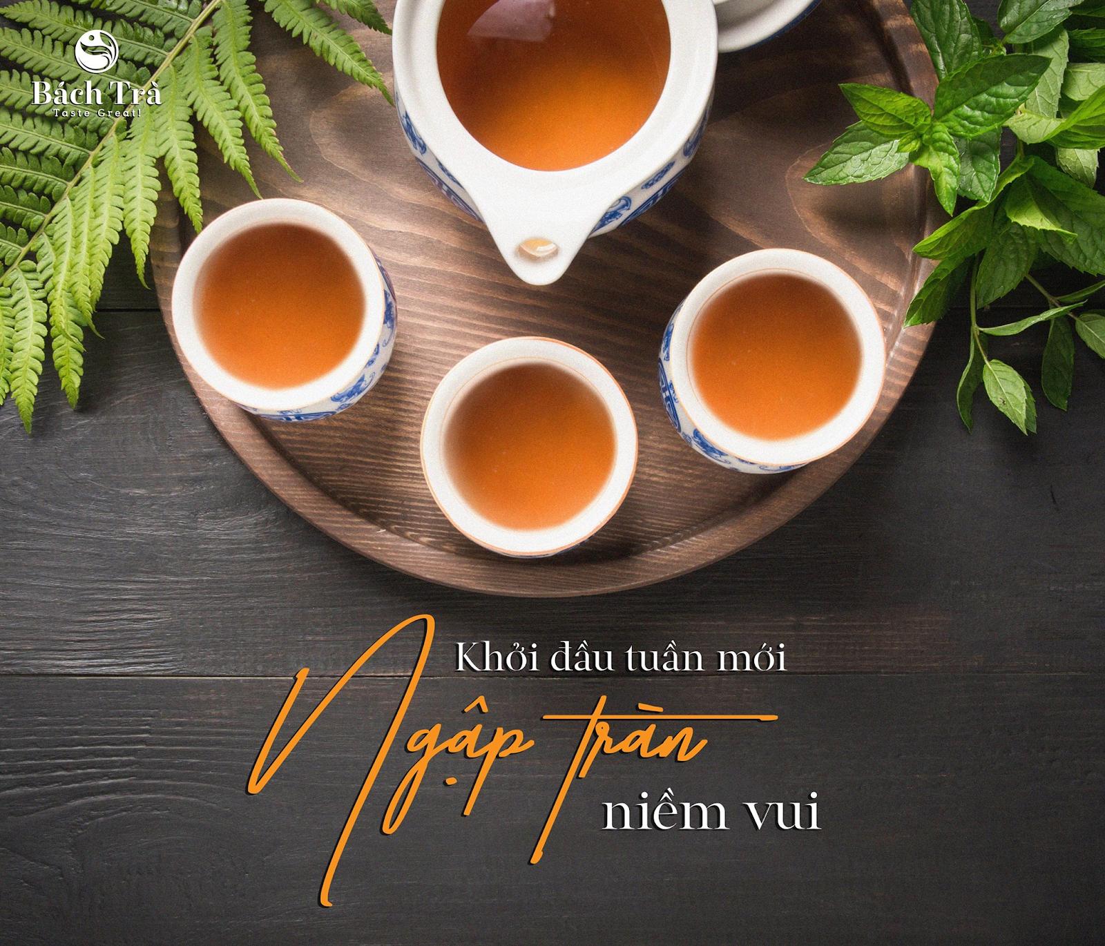 (Hồng trà là loại trà được nhiều người yêu thích)
